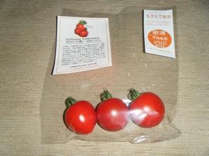 00トマト.jpg